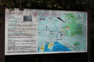 2020年度 いわき市富ヶ浦公園花見電飾工事